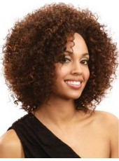 Fluffy Charming Curly Hairstyle Medium Brown African American Hair Glueless Lace Front Popular Fascinating Wig About 16 Inches
