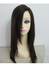 Super Soft Long Straight Hair Styling 100% Human Hair Wigs