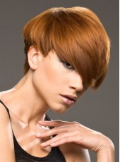 Charming High Quality Short Straight Synthetic Capless Wig About 8 Inches