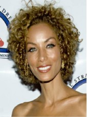 Medium African American Hair Brown Curly Hairstyle Top Quality Cheap Wigs